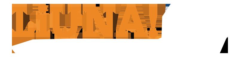 Liuna NY NYS Laborers-Mason Tenders logo
